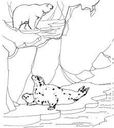 plansa de colorat zoo de colorat p19